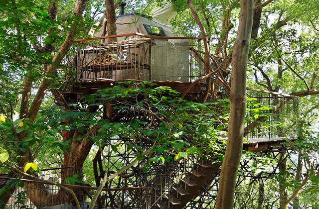 La cabane dans les arbres la plus grande au monde page 2 for La plus grande cabane du monde