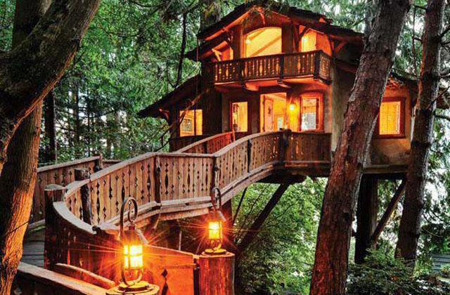 La cabane dans les arbres la plus grande au monde