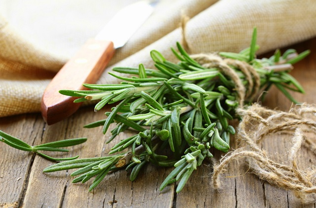 Le romarin : un remède naturel à redécouvrir
