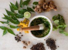 Guérir l'asthme et la bronchite avec des herbes naturelles