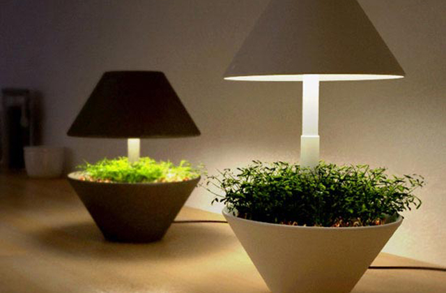 une lampe led pour les plantes aromatiques. Black Bedroom Furniture Sets. Home Design Ideas