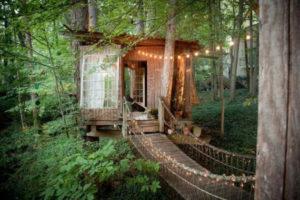 La maison dans les arbres réservé jusqu'en 2018