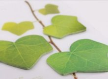 Un bloc-notes de feuilles de lierre