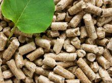 Le granulé de bois de qualité (et écologique) : comment le reconnaître