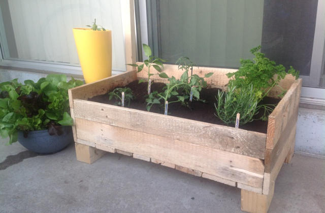 Bricolage comment construire une grow box c est for Bricolage jardin