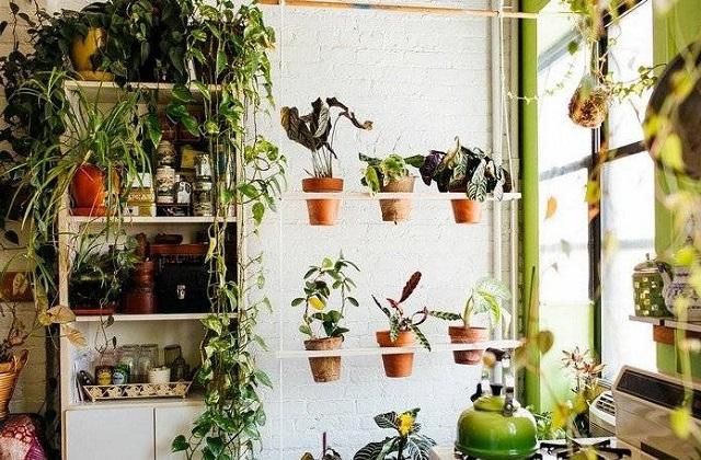 comment d corer un jardin vertical voil des id es et. Black Bedroom Furniture Sets. Home Design Ideas