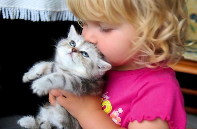 Les animaux de compagnie aident les enfants à lutter contre les allergies