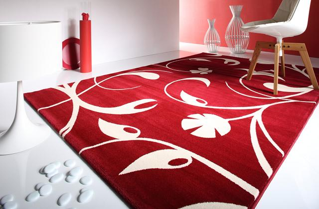 Décorez votre maison avec des tapis