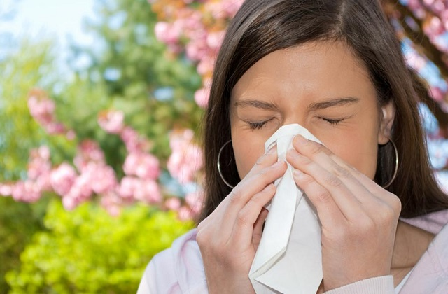 Avoir une maison sans allergie