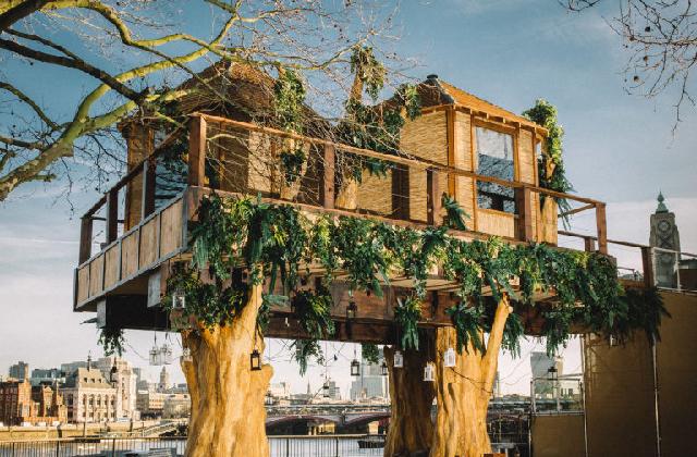 Pourquoi il y a une maison dans les arbres dans le centre de Londres ?