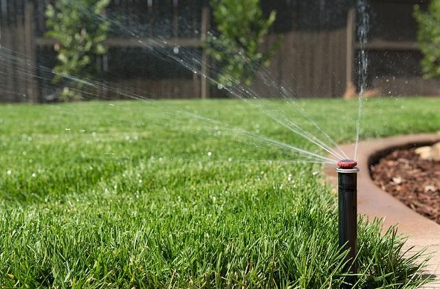 Des conseils pour obtenir une pelouse parfaite