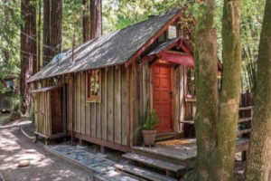 Une petite maison dans les arbres, loin du smog et le chaos de la ville, est en vente