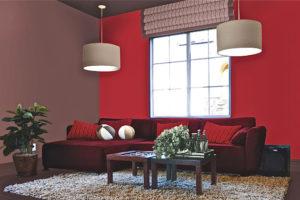 Décorer la maison avec l'amarante : voilà nos conseils