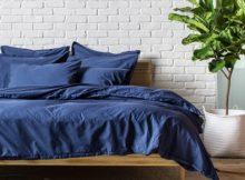 Les plantes pour la chambre à coucher : voilà les types à choisir pour respirer toujours de l'air propre
