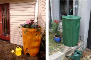 Travaux de jardinage : comment utiliser l'eau de pluie