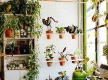 Comment décorer un jardin vertical : voilà des idées et des conseils utils