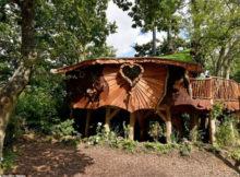 Piggledy Tree House : la maison dans les arbres qui coûte 200 000 livres